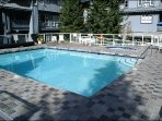 Year Round Saltwater Pool for you to Enjoy