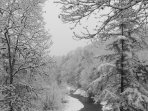 Snowy day on the beautiful South Toe River.