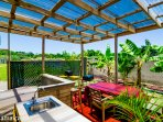 Enjoy the tropical backyard garden with mulberry, banana and palm trees.