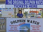 Take time to dolphin watch or go on a eco tour in the Laguna Madre.