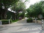 Walk, Run or Bike The Katy Trail