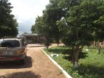 Well secured gated bungalow with spacious compound with beautiful shade and fruit trees.