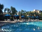 Pool by Tradewinds Restaurant