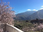 Almond blossom with views to mountains from the pool terrace