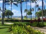 Villa 105 ocean view
