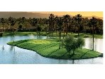 THE AMAZING GOLF COURSES & PRIVATYE COUNTRY CLUBS/RESORTS HERE IN THE DESERT ARE TOP NOTCH !!!