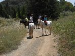 A great area for a hack, a couple of hours or a day long trek with lunch