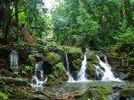 Nuuanu Waterfalls