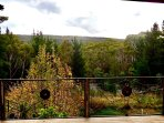 view to Wombat State Forest from main deck