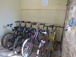 Borrow our bikes.