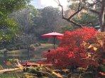Rikugien garden, beautiful Japanese garden 10 mins walk from this apt.