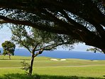Wyndham Ka Eo Kai golf