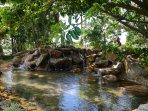 Wyndham Bali Hai Villas creek