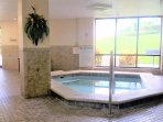 indoor hot tub and sauna with cable television