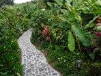 The path to Rainbow Ohana entrance