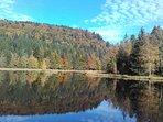 étang de lispach en automne