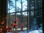 View from the kitchen, looking at Hudson River and snowshoe trailhead.
