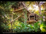 The Treehouse! Suspended 30 feet up in the trees.