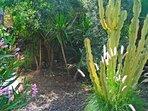 Loft En la Montaña con piscina y vistas a la Gomera en Tenerife Sur    Jardín