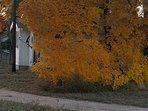 Fall is beautiful here!