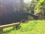 Bench & stone bridge at the top of Kahuna Falls