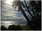 Diamond Head Paradise Dream Location Ocean Front / Gold Coast