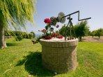 Garden decoration - Villa Russelia in Rhodes