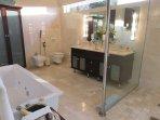 large bathroom with bidet, toilet, double vanity, walk in shower, spa bath