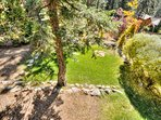 Private backyard, beautifully landscaped and fenced