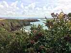 Coastal path towards Milford Haven