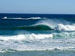 Nahoon reef is one of the best surfing spots in the world and we host major pro surfing events here