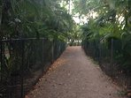 Beach path...