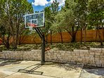 Professional Basketball Hoop & 2 balls provided