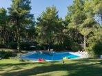 Full pool view