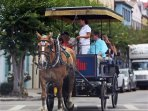 Horse Carriages, Pedicabs and the free Trolley are located on the same Street!