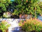 Flower beds and seasonal fruit