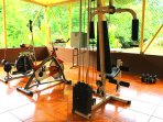 Workout room with cables and pulleys weight machine, elliptical trainer and bike. View of backyard.