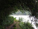 The river shore