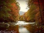 River Tilt in the Autumn