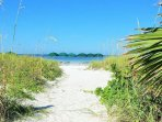 Sand Path to Beach