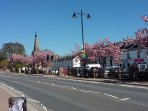 Beauly  blossom in Spring