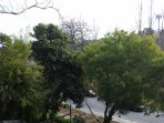 a leafy view from the balcony