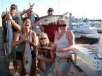 FISHING TRIPS available with licensed Captain