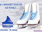 Stay at Heather Lodge this Winter and Skate at the Icescape Tropicana, 5 minute walk away!!