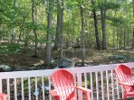Explore the private wooded backyard.