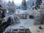 jardinet sous la neige
