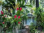 Centrally located in Coconut grove, this charming bungalow is only minutes from all major attractions, restaurants, and...