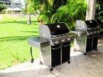 Complex Barbecue