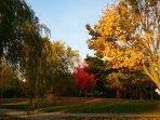 Ashbridge's Bay Park, a 20 minute walk