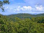 Mountain Wonderland